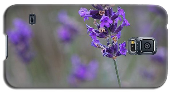 Galaxy S5 Case featuring the photograph A Touch Of Lavender by Nathan Rupert
