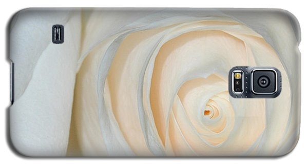 Galaxy S5 Case featuring the photograph A Touch Of Peach by Sami Martin