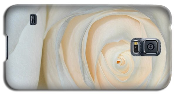 A Touch Of Peach Galaxy S5 Case