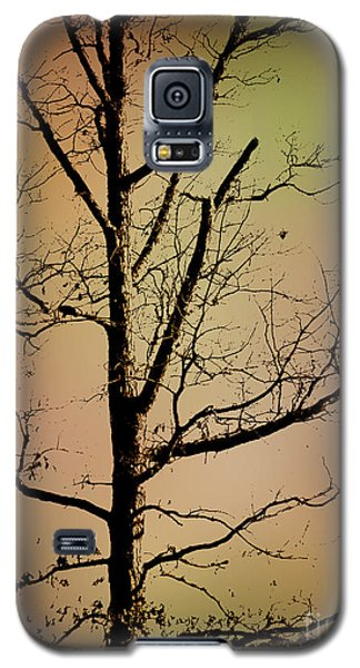 A Tree By The Lake Galaxy S5 Case
