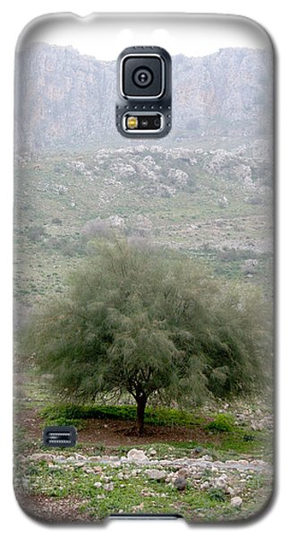 A Tree In Israel Galaxy S5 Case