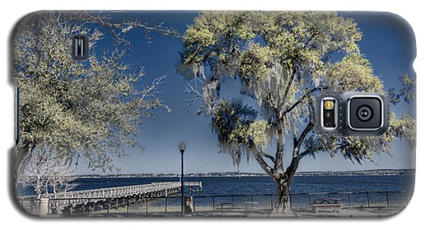 A View Of Lake Minneola Galaxy S5 Case by Lewis Mann