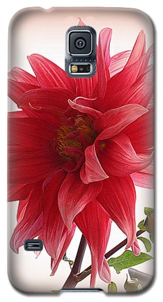 A Vision In  Coral - Dahlia Galaxy S5 Case
