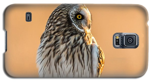 A Vision In Gold Galaxy S5 Case by Yeates Photography