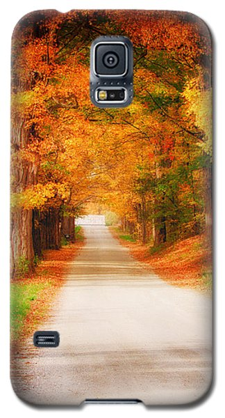 A Walk Along The Golden Path Galaxy S5 Case by Jeff Folger
