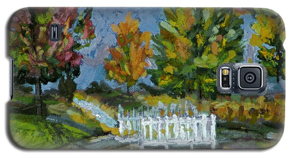 Galaxy S5 Case featuring the painting A Walk In The Park by Michael Daniels