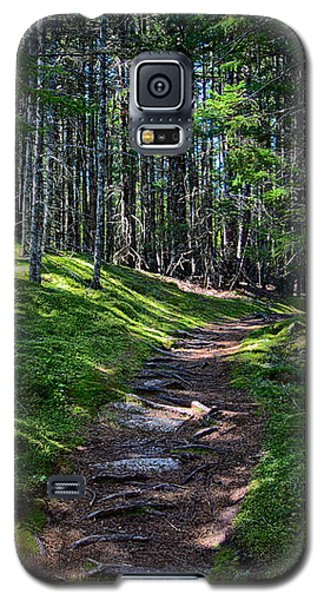 A Walk In The Woods Galaxy S5 Case