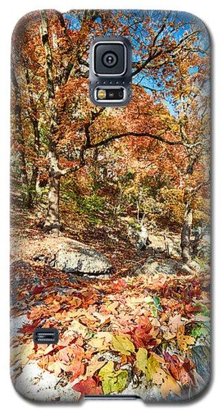 A Walk Through The Maple Trail Galaxy S5 Case