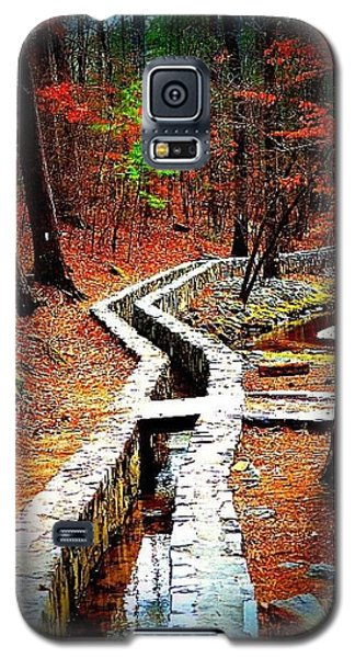 Galaxy S5 Case featuring the photograph A Walk Through The Woods by Tara Potts