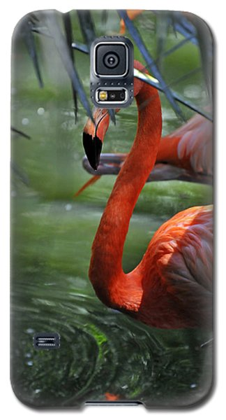 Galaxy S5 Case featuring the photograph A Watchful Eye by Kenny Francis