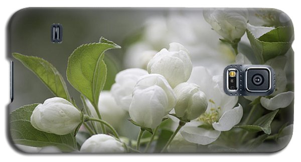 A Whisper Of Spring Galaxy S5 Case