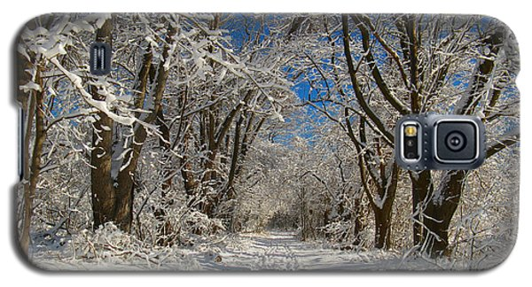 Galaxy S5 Case featuring the photograph A Winter Road by Raymond Salani III