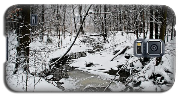 A Winter Stream Galaxy S5 Case by Lila Fisher-Wenzel