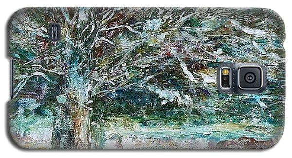 A Winter Tree Galaxy S5 Case by Mary Wolf