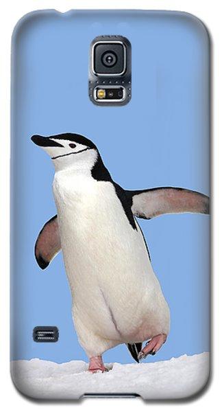 A Winter Walk Galaxy S5 Case