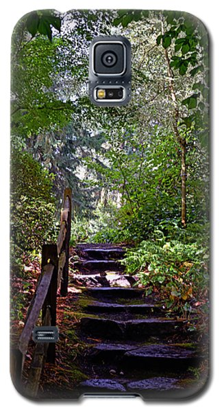 A Wooded Path Galaxy S5 Case