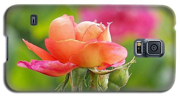 A Young Benjamin Britten Rose Galaxy S5 Case
