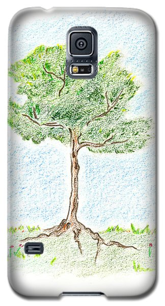 A Young Tree Galaxy S5 Case