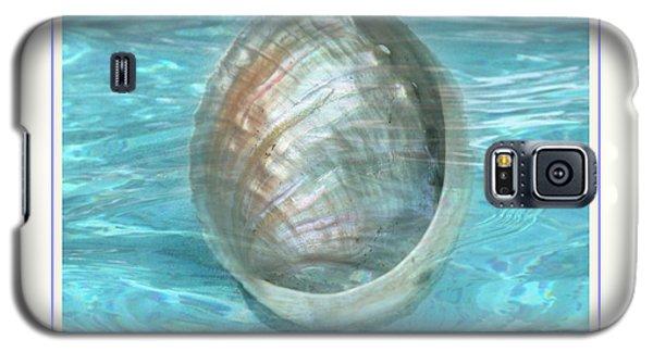 Abalone Underwater Galaxy S5 Case by Linda Olsen