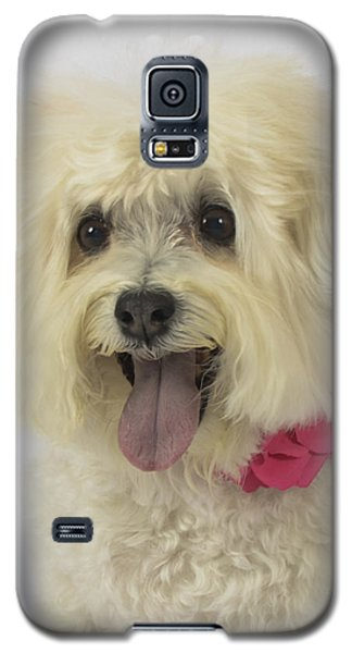 Abby Portrait Galaxy S5 Case