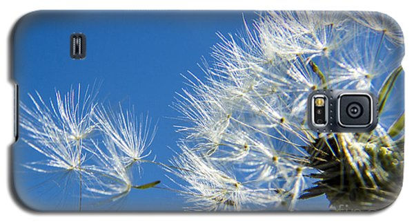 About To Leave - Dandelion Seeds Galaxy S5 Case