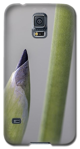 About To Unfurl Galaxy S5 Case