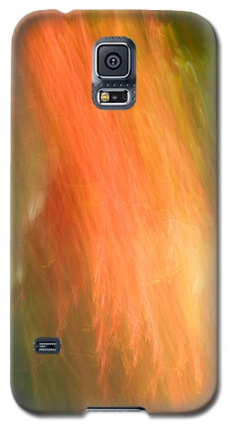 Abstract 16 Galaxy S5 Case
