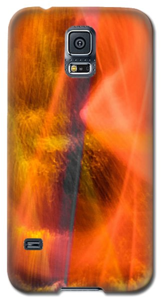 Abstract 19 Galaxy S5 Case