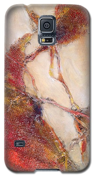 Conjunction 2 Galaxy S5 Case by John  Svenson
