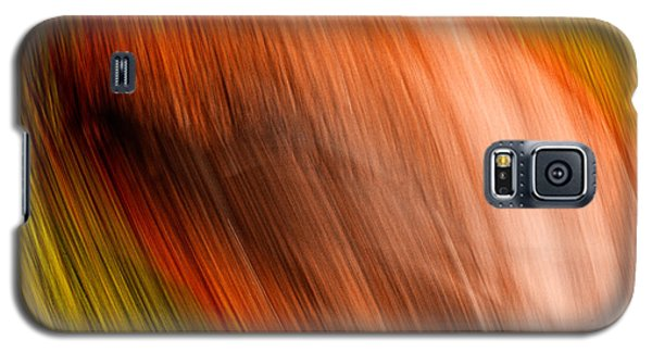 Abstract #5 Galaxy S5 Case