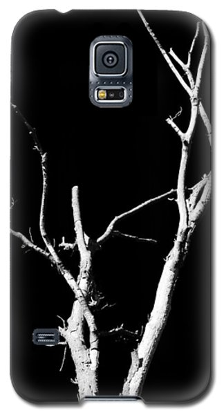 Abstract Branches Galaxy S5 Case by Maggy Marsh