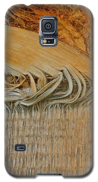 Abstract In Gold And Brown Galaxy S5 Case by Kirsten Giving