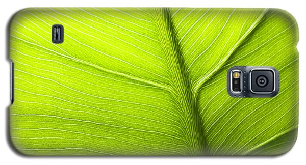 Abstract Leaf Galaxy S5 Case