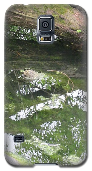 Abstract Nature 3 Galaxy S5 Case