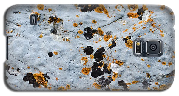 Abstract Orange Lichen 1 Galaxy S5 Case by Chase Taylor