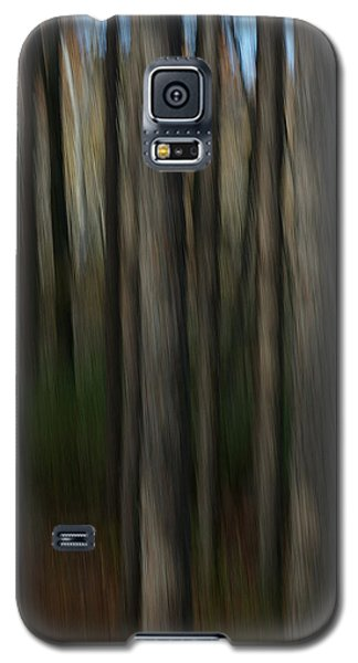 Abstract Woods Galaxy S5 Case by Randy Pollard