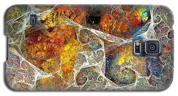 Abstraction 462-09-13 Marucii Galaxy S5 Case
