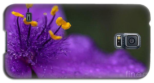 Abundance Galaxy S5 Case