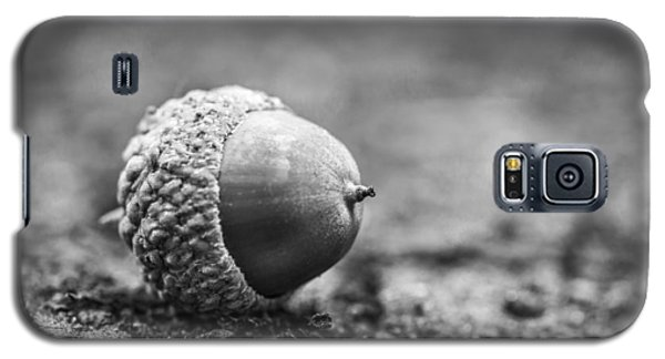 Acorn. Galaxy S5 Case