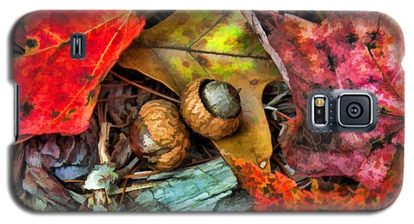 Acorns And Leaves Galaxy S5 Case by Kenny Francis