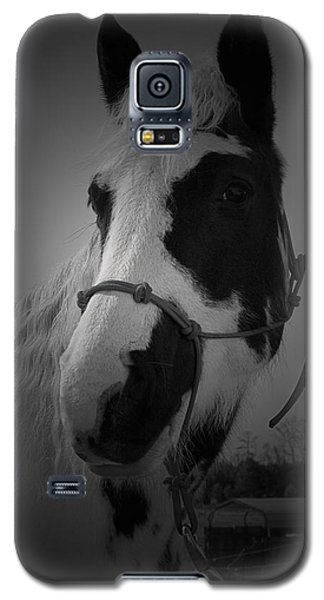 Addie Mason 2 Galaxy S5 Case