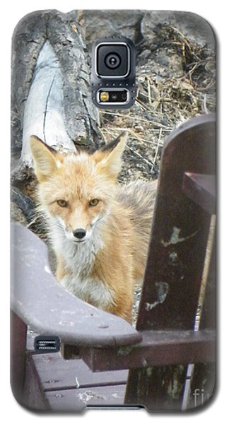 Galaxy S5 Case featuring the photograph Adirondack Envy by Brian Boyle