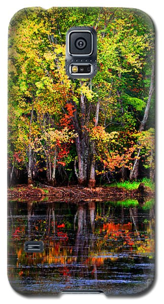 Adirondack Reflections Galaxy S5 Case by Diane E Berry