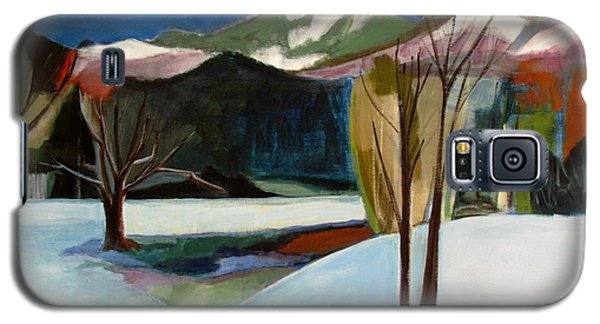 Galaxy S5 Case featuring the painting Adirondacks by Betty Pieper