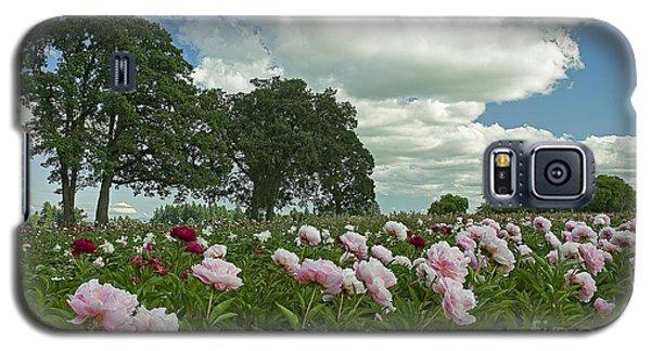 Adleman's Peony Fields Galaxy S5 Case by Nick  Boren