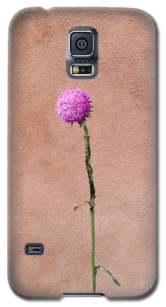 Adobe  Galaxy S5 Case