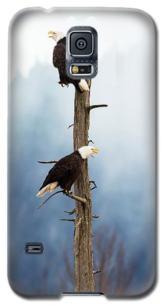 Adult Bald Eagles  Haliaeetus Galaxy S5 Case by Doug Lindstrand