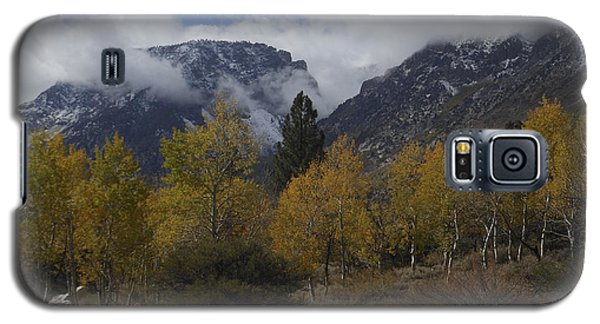 Aerie Crag And Aspen Trees Galaxy S5 Case