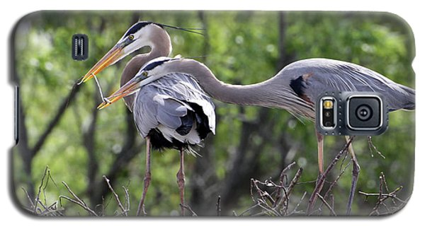 Affectionate Great Blue Heron Mates Galaxy S5 Case