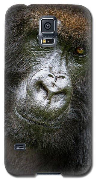 Africa Rwanda Female Mountain Gorilla Galaxy S5 Case